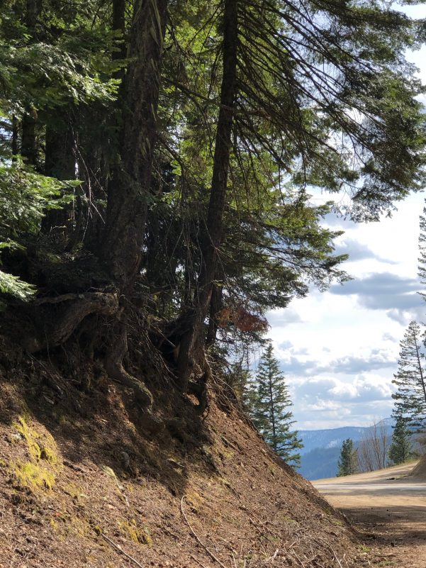Title: Exploring Mountain Roads